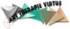Webassoc.fr avec Art-Thérapie Virtus